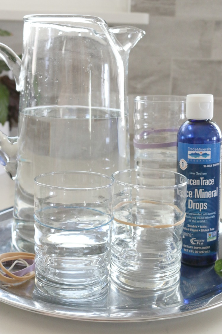 Why Every Kitchen Needs a Hydration Station and How to Make One - Learn two reasons why every kitchen needs a hydration station and make one today!