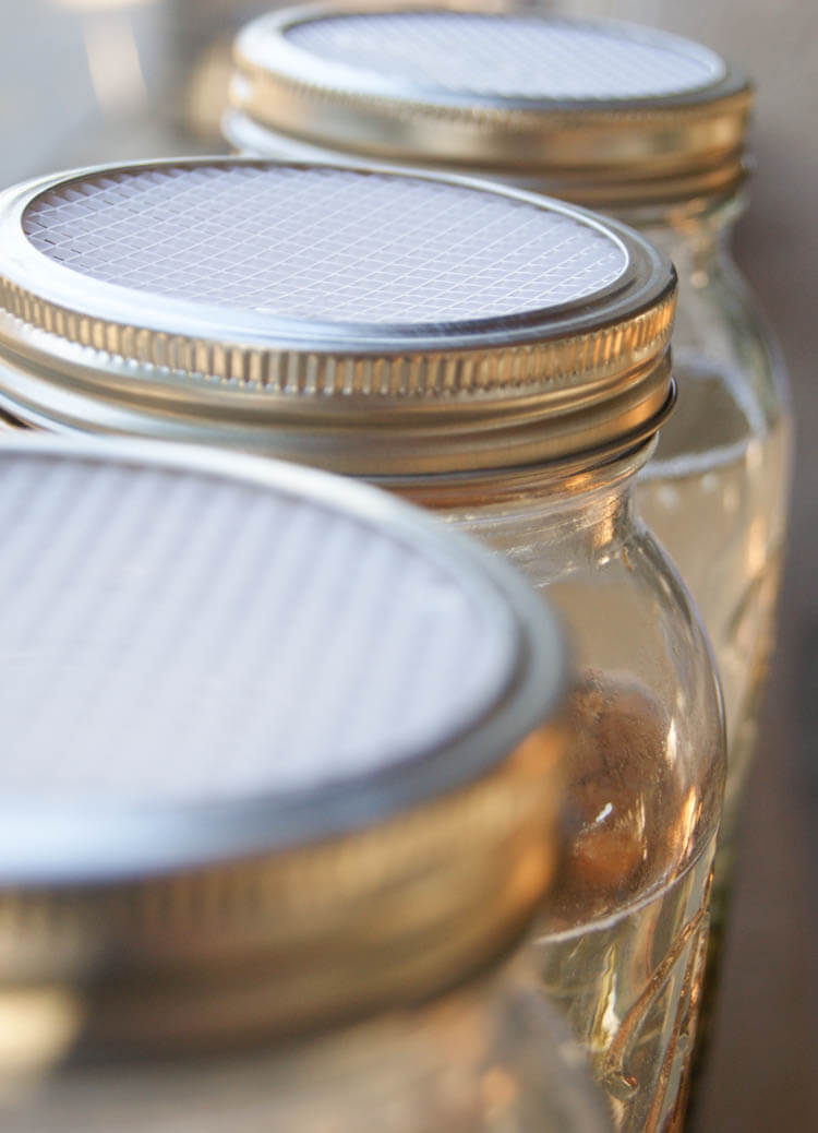DIY Soaking & Sprouting Lids for Mason Jars - These DIY Soaking & Sprouting Lids for Mason Jars can be made at home for 5 cents each. Economical way to absorb more nutrients.
