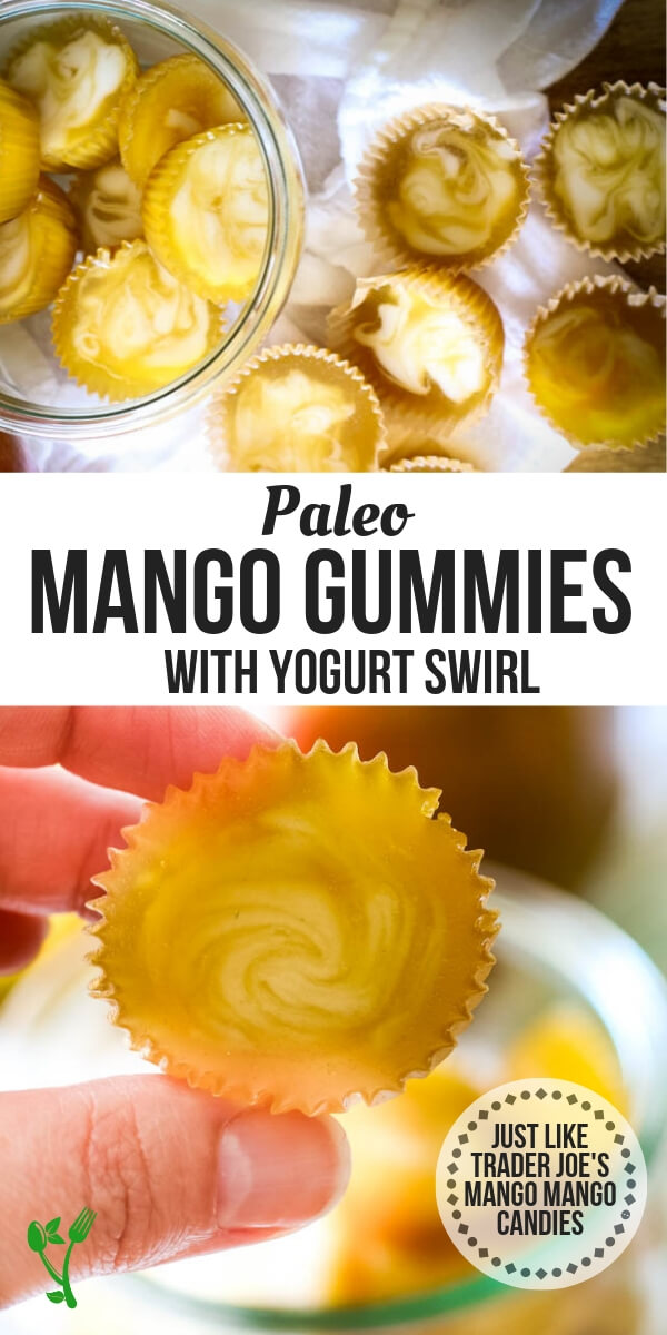 Mango & Cream Gummy Candies - Trader Joe's Copycat!! Mango and Cream Gummies are a gut-healing, refined sugar-free, and an overall healthy treat that your whole family will love. It's a simple Paleo and GAPS candy that takes 20 minutes to make. #paleotreats #copycat