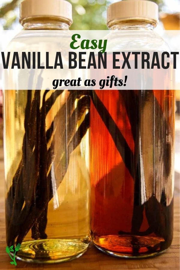 Easy vanilla bean extract in a two bottles at different stages of infusion.