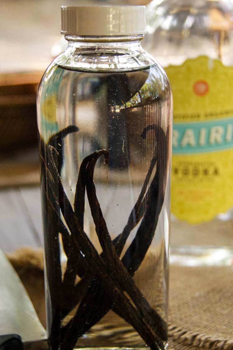 Vanilla beans in tall bottle with vodka poured over.