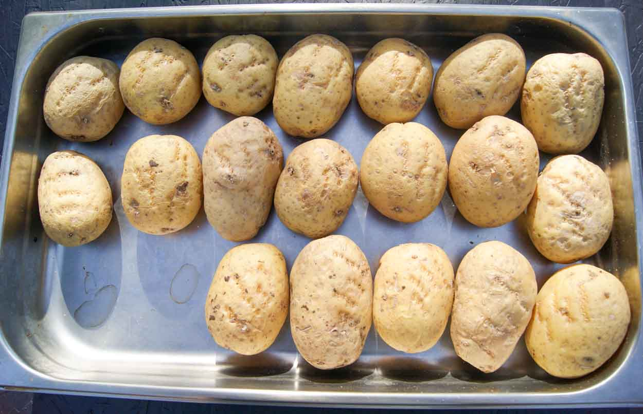 Yukon gold potatoes pricked with a fork spread on a large roasting pan ready to bake in the oven.