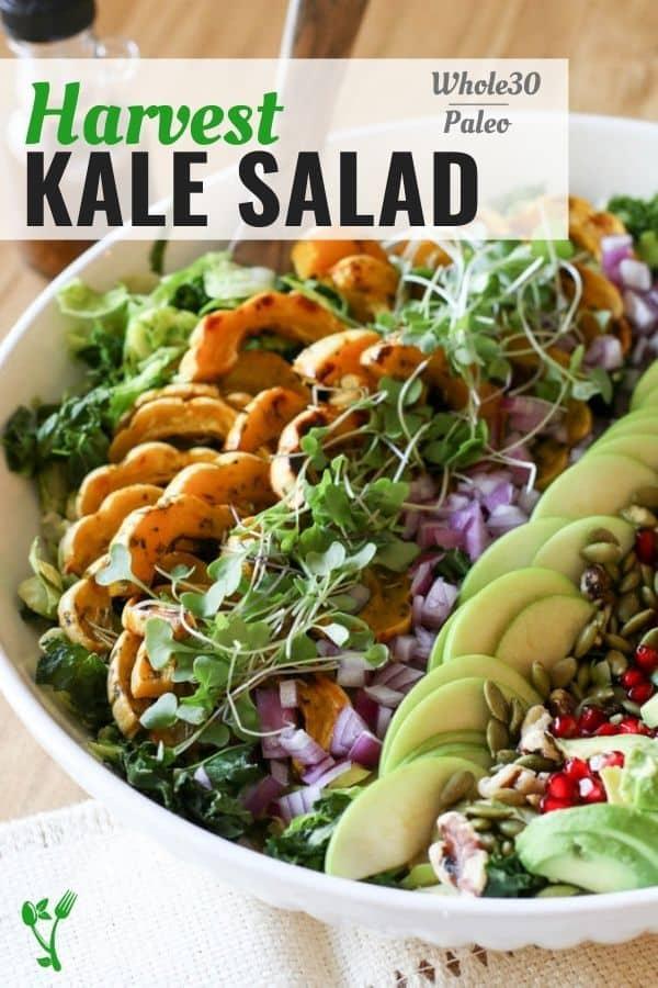 Harvest Kale salad with kale, squash, Brussel sprouts.