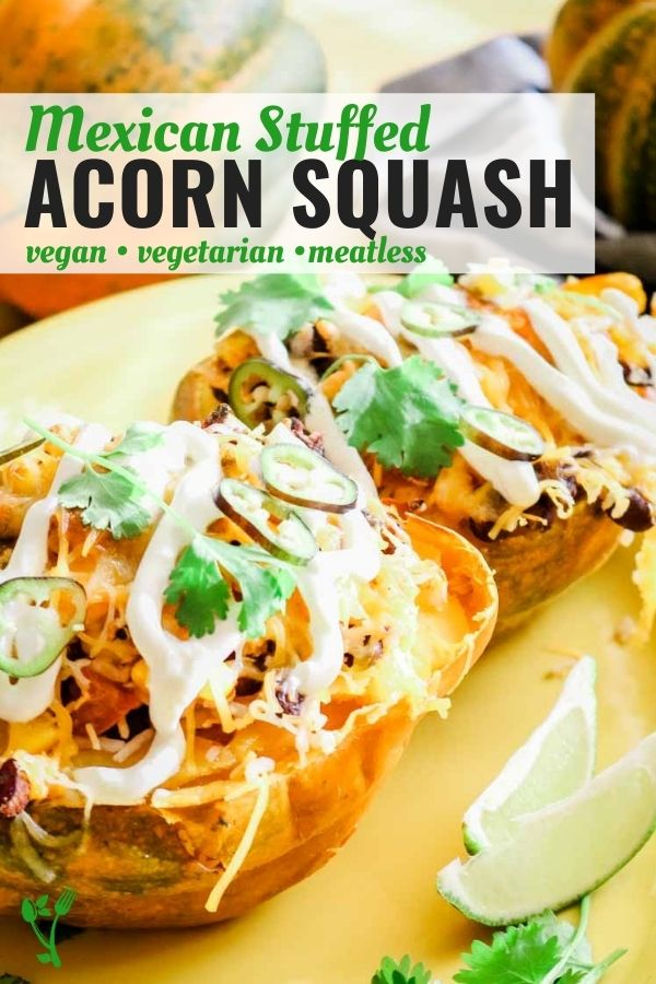 Mexican Stuffed Acorn Squash that is vegan, vegetarian and meatless