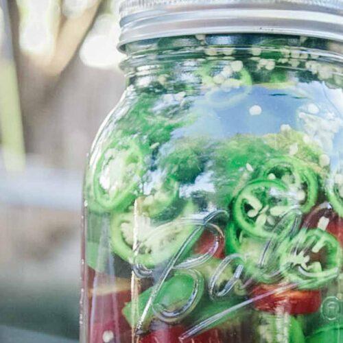 Fermented Jalapenos in a mason jar